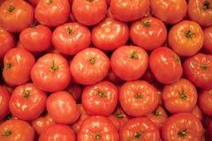Priorità bassa rossa del pomodoro Fotografia Stock