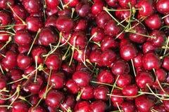 Priorità bassa rossa della ciliegia Immagine Stock Libera da Diritti