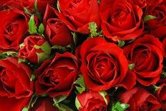 Priorità bassa rossa delle rose Fotografia Stock Libera da Diritti