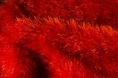 Priorità bassa rossa di struttura della pelliccia Fotografia Stock