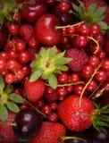 Priorità bassa rossa fresca della frutta Immagini Stock
