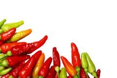 Priorità bassa rossa luminosa del peperoncino rosso Fotografia Stock Libera da Diritti