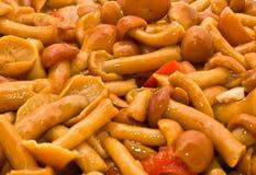 Priorità bassa saporita dell'alimento - funghi prataioli Fotografie Stock