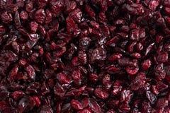 Priorità bassa secca dei mirtilli In pieno dei mirtilli rossi immagine stock