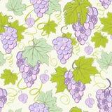 Priorità bassa senza giunte creativa dell'uva. Immagine Stock