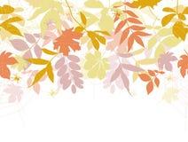 Priorità bassa senza giunte di autunno. Immagine Stock Libera da Diritti