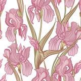 Priorità bassa senza giunte floreale Modello dell'iride del fiore illustrazione vettoriale