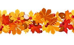 Priorità bassa senza giunte orizzontale con i fogli di autunno. Fotografia Stock