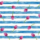 Priorità bassa a strisce Illustrazione con le bande blu ed i tulipani del pinl Immagine Stock Libera da Diritti