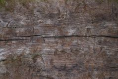 Priorità bassa strutturata di legno Grungy Fotografie Stock Libere da Diritti