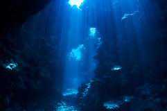 Priorità bassa subacquea immagine stock