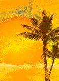Priorità bassa tropicale Fotografia Stock Libera da Diritti