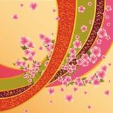 Priorità bassa variopinta con il fiore di sakura Immagine Stock