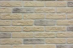 Priorità bassa variopinta del muro di mattoni Immagine Stock