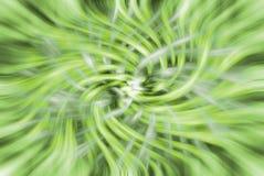 Priorità bassa verde astratta di giro rapido Immagine Stock