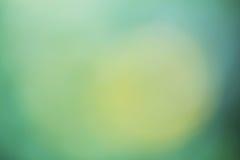 Priorità bassa verde chiaro Fotografia Stock