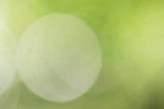 Priorità bassa verde chiaro Fotografia Stock Libera da Diritti