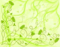 Priorità bassa verde decorata Illustrazione Vettoriale