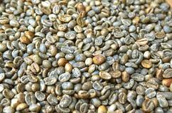 Priorità bassa verde del chicco di caffè Fotografie Stock Libere da Diritti