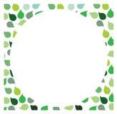 Priorità bassa verde del foglio Immagini Stock Libere da Diritti