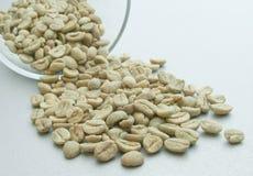 Priorità bassa verde di Cofee Immagine Stock