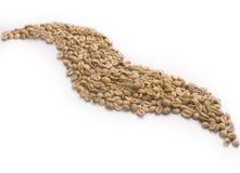 Priorità bassa verde di Cofee Immagini Stock Libere da Diritti