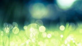 Priorità bassa verde e blu Fotografia Stock