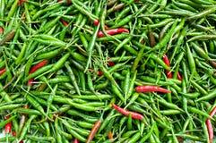 Priorità bassa verde e rossa del peperoncino rosso Immagini Stock