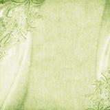 Priorità bassa verde fragile Fotografia Stock