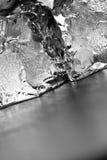 Priorità bassa verticale dei cubi di ghiaccio di gradazione di grigio fotografia stock libera da diritti