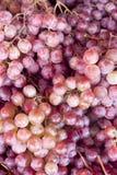 Priorità bassa viola fresca della frutta dell'uva Immagine Stock
