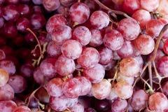 Priorità bassa viola fresca della frutta dell'uva, Fotografia Stock