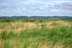 Priorità bassa vuota del terreno coltivabile Fotografia Stock
