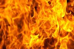Priorità bassa del fuoco Fotografie Stock