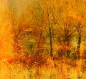 Priorità bassa del grunge di arte con gli alberi forestali Immagine Stock