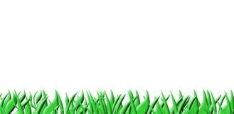 Priorità bassa dell'erba su bianco Fotografia Stock Libera da Diritti