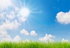 Priorità bassa della natura della sorgente con erba e cielo blu Immagine Stock Libera da Diritti