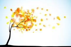 Priorità bassa di autunno Immagini Stock