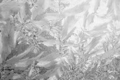 Priorità bassa di gelo Immagini Stock