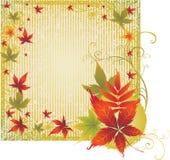Priorità bassa di Grunge con i fogli di autunno. Ringraziamento Immagini Stock