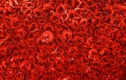 Priorità bassa di rosa di colore rosso Fotografia Stock Libera da Diritti