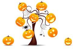 Priorità bassa divertente di Halloween con le zucche Immagini Stock Libere da Diritti