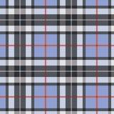 Priorità bassa scozzese Fotografie Stock