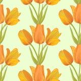 Priorità bassa sealess dei tulipani di vettore. Fotografia Stock Libera da Diritti