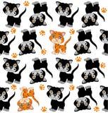 Priorità bassa senza giunte con i gatti Fotografie Stock Libere da Diritti