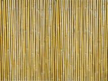Priorità bassa strutturata di bambù Fotografia Stock