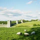 Priory de Kells image libre de droits