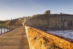 Priory e castello di Tynemouth dal pilastro del nord Immagini Stock Libere da Diritti