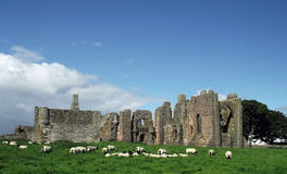 The Priory, Holy Island Royalty Free Stock Photography