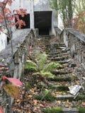 Pripyat-Treppe lizenzfreie stockbilder